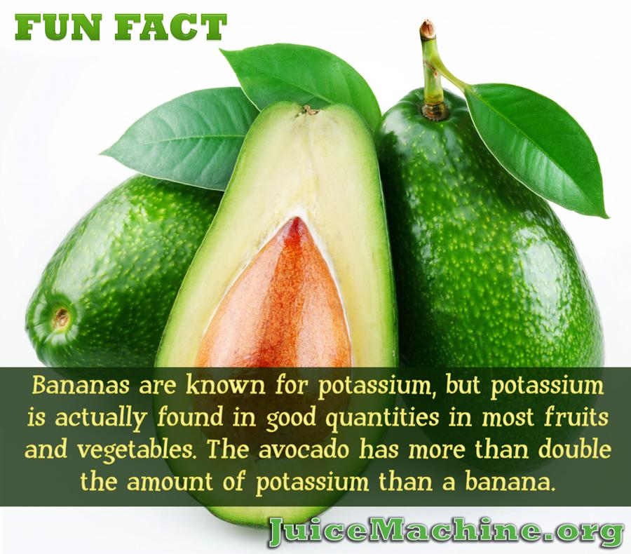 Avocados Potassium